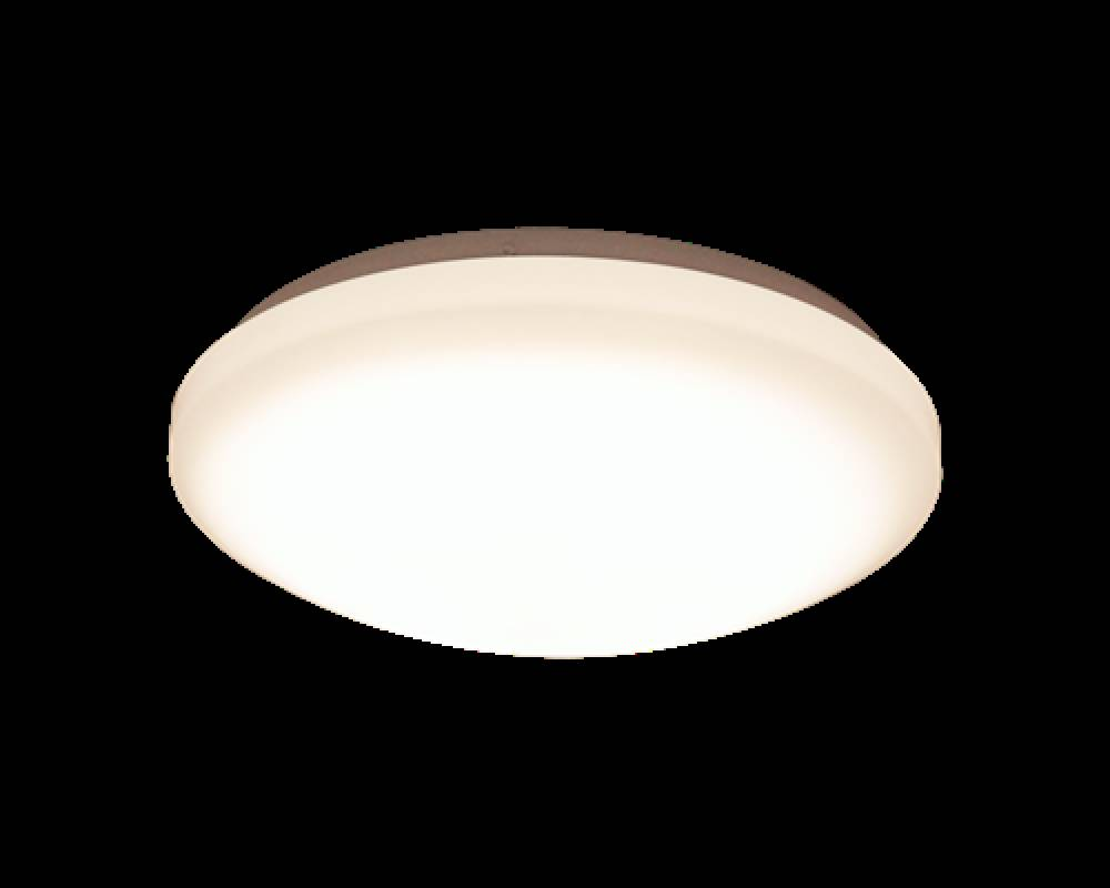Scanlamp Basic Takplafond